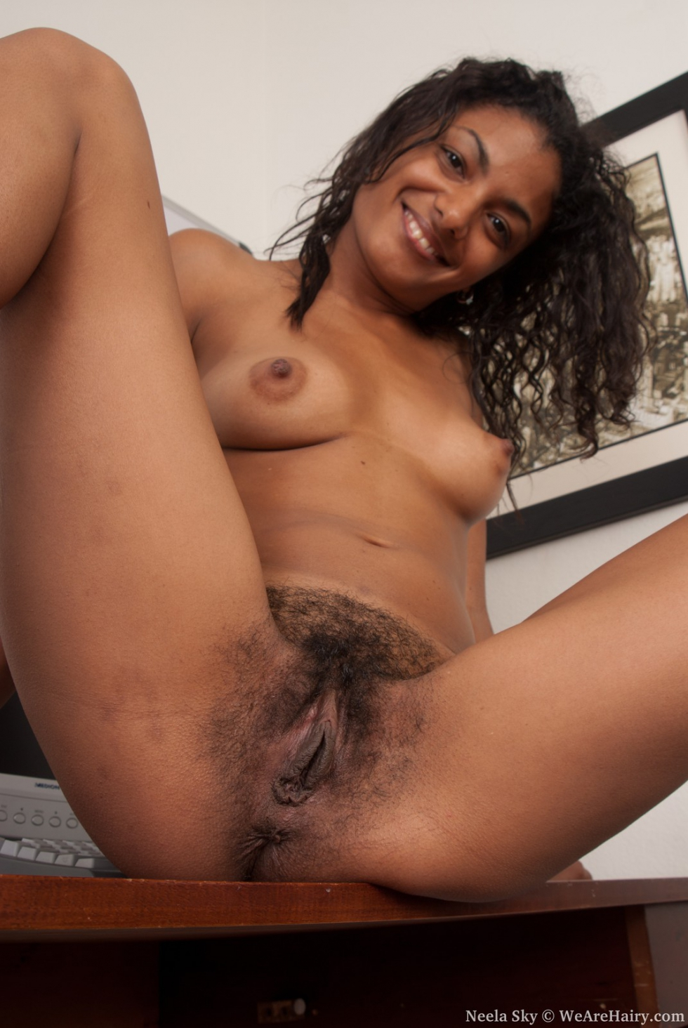 Hairy ebony gallery